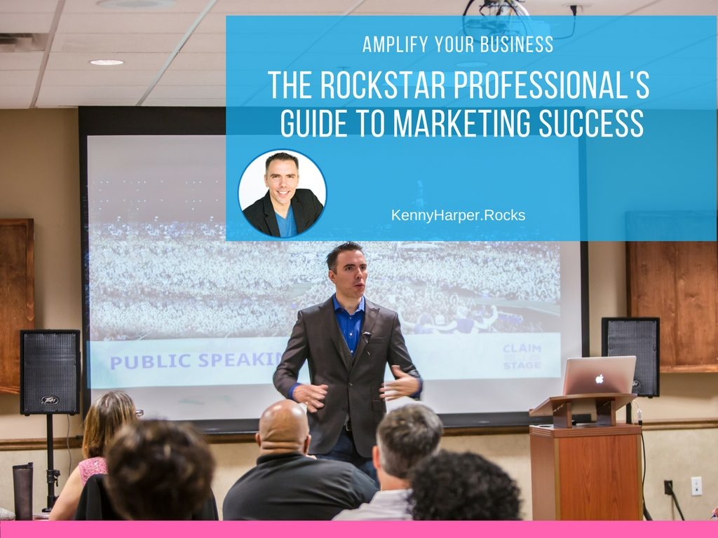 Amplify Your business-the rockstar professional's guide to marketing success