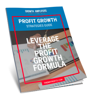 Profit Growth Strategies Guide